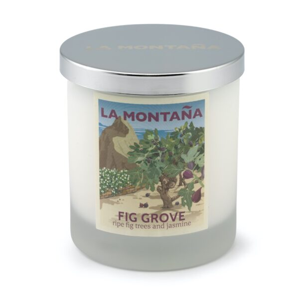 Fig Grove candle