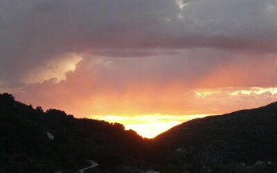 AUGUST SUNSET – coming very, very soon!